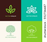 vector set of logo design... | Shutterstock .eps vector #552736687