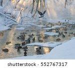 Fabulous Winter Landscape With...