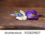 Small photo of spring flowers (snowdrop, crocuse, squill) on wood