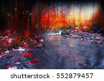 mysterious forest with magic... | Shutterstock . vector #552879457