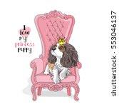 cavalier king charles spaniel... | Shutterstock .eps vector #553046137