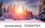 majestic winter landscape.... | Shutterstock . vector #553067953
