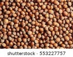 Hazelnuts. Food Background ...