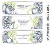 fresh fruit sketch banner set.... | Shutterstock .eps vector #553311853