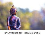 This Statue Depicts Lord Buddh...
