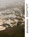 Small photo of Terraced rice fields in water season of Hani ethnic people in Yunnan province, China.