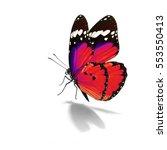 beautiful monarch butterfly... | Shutterstock . vector #553550413