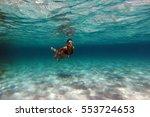 santanyi  majorca  spain   sep... | Shutterstock . vector #553724653