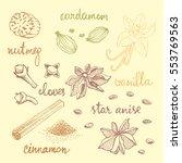 set of spices  nutmeg  cardamom ... | Shutterstock .eps vector #553769563