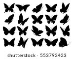 Stock vector set of butterflies isolated on white collection of silhouettes eps 553792423