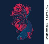 colorful betta fish vector... | Shutterstock .eps vector #553966717