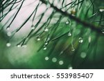 abstract background from... | Shutterstock . vector #553985407