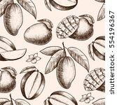 vector mango  hand drawn sketch.... | Shutterstock .eps vector #554196367