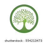 tree leaf vector logo design ... | Shutterstock .eps vector #554213473