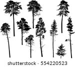 illustration with pine... | Shutterstock .eps vector #554220523
