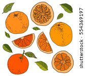 hand drawn set of colorful... | Shutterstock .eps vector #554369197