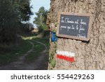 motivational sign on the camino ...   Shutterstock . vector #554429263