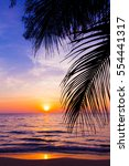 Stock photo sunset landscape beach sunset palm trees silhouette on sunset tropical beach 554441317