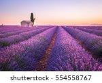 Valensole Lavender Fields ...