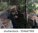 Small photo of A rocky crevice