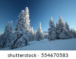 Winter Scenery On The...