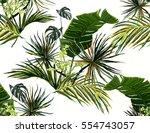 beautiful seamless vector... | Shutterstock .eps vector #554743057