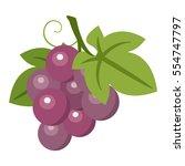 illustration of grapes | Shutterstock .eps vector #554747797