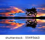 sky and clouds of color in the... | Shutterstock . vector #55495663