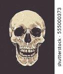 anatomic grunge skull vector...   Shutterstock .eps vector #555000373