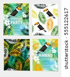 vector set of seamless... | Shutterstock .eps vector #555122617