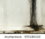grunge white wall with mold   Shutterstock . vector #555180133