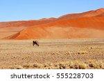 Stunning Desert Landscape And...