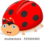 cute ladybug cartoon | Shutterstock .eps vector #555304303