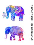 elephant color illustration... | Shutterstock .eps vector #555339253