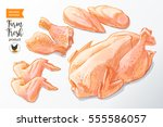 fresh row chicken meat divided... | Shutterstock .eps vector #555586057