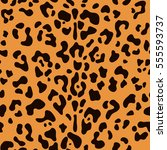 leopard seamless pattern ... | Shutterstock .eps vector #555593737
