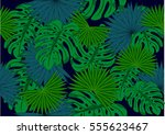 tropical leaves   vector... | Shutterstock .eps vector #555623467