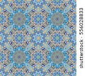 vector laced decorative... | Shutterstock .eps vector #556028833