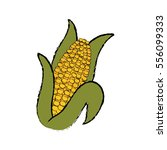 fresh corn vegetable icon... | Shutterstock .eps vector #556099333