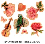 a collection of vintage style... | Shutterstock . vector #556128703