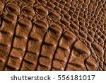Crocodile Leather Textured...