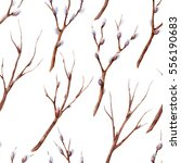 hand drawn watercolor seamless...   Shutterstock . vector #556190683