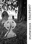 old stonework graves and... | Shutterstock . vector #556193497