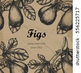 template with handdrawn figs | Shutterstock . vector #556225717