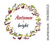 floral autumn ornament from... | Shutterstock .eps vector #556300213