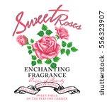 slogan and rose vector art for... | Shutterstock .eps vector #556323907