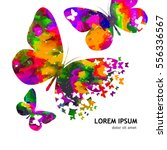 butterflies on a colorful... | Shutterstock .eps vector #556336567