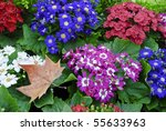 Autumn Flower Arrangement Of...