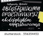 calligraphic vector script font.... | Shutterstock .eps vector #556354453