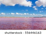 Pink Salt Lake Masazirgol In...